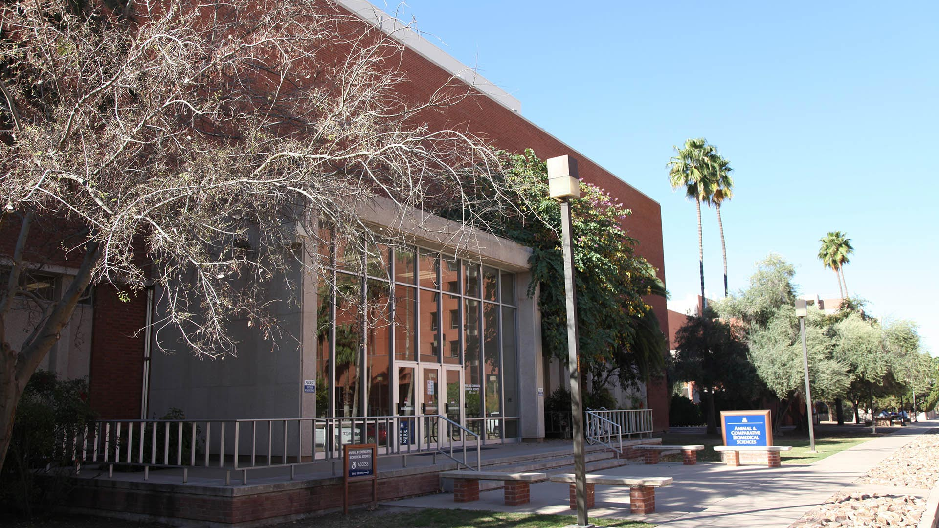 "Building 90 has been referred to as a top priority for ""renewal"" by officials at the University of Arizona."
