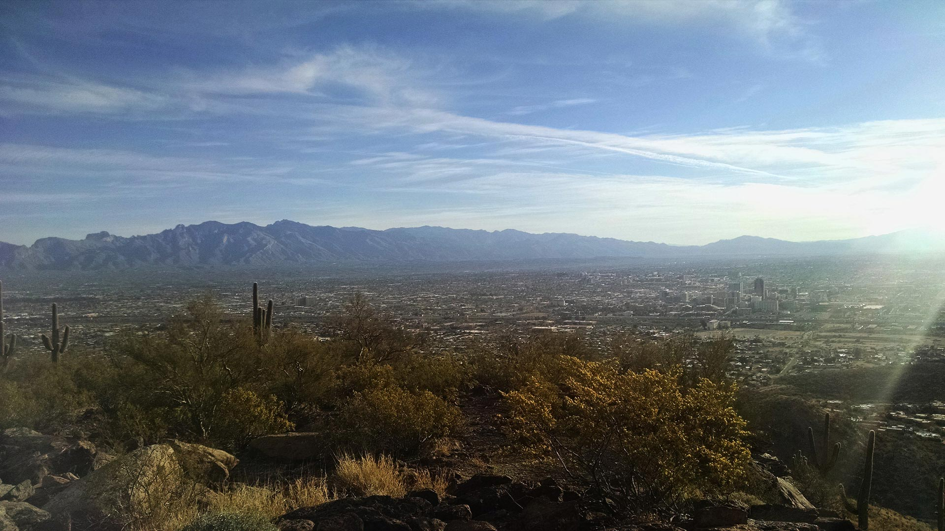 A view of Tucson from Tumamoc Hill.
