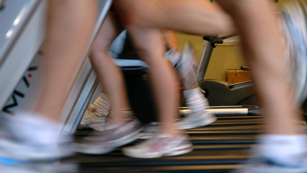 Several people running on treadmills at a fitness facility.