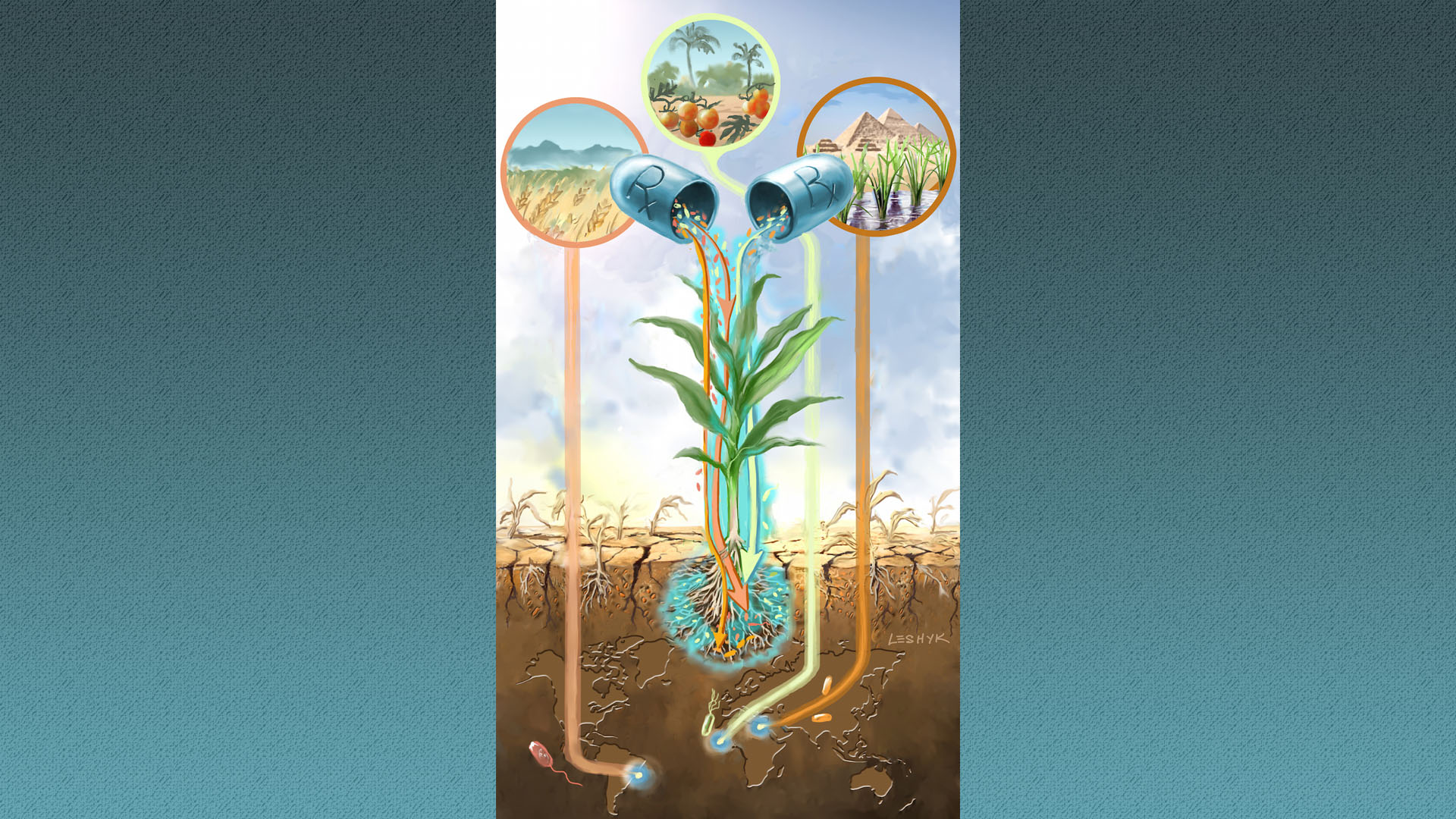 "A future is depicted in which rhizobacteria sourced from stressful areas around the world may be used as a metaphorical ""prescription for drought."""