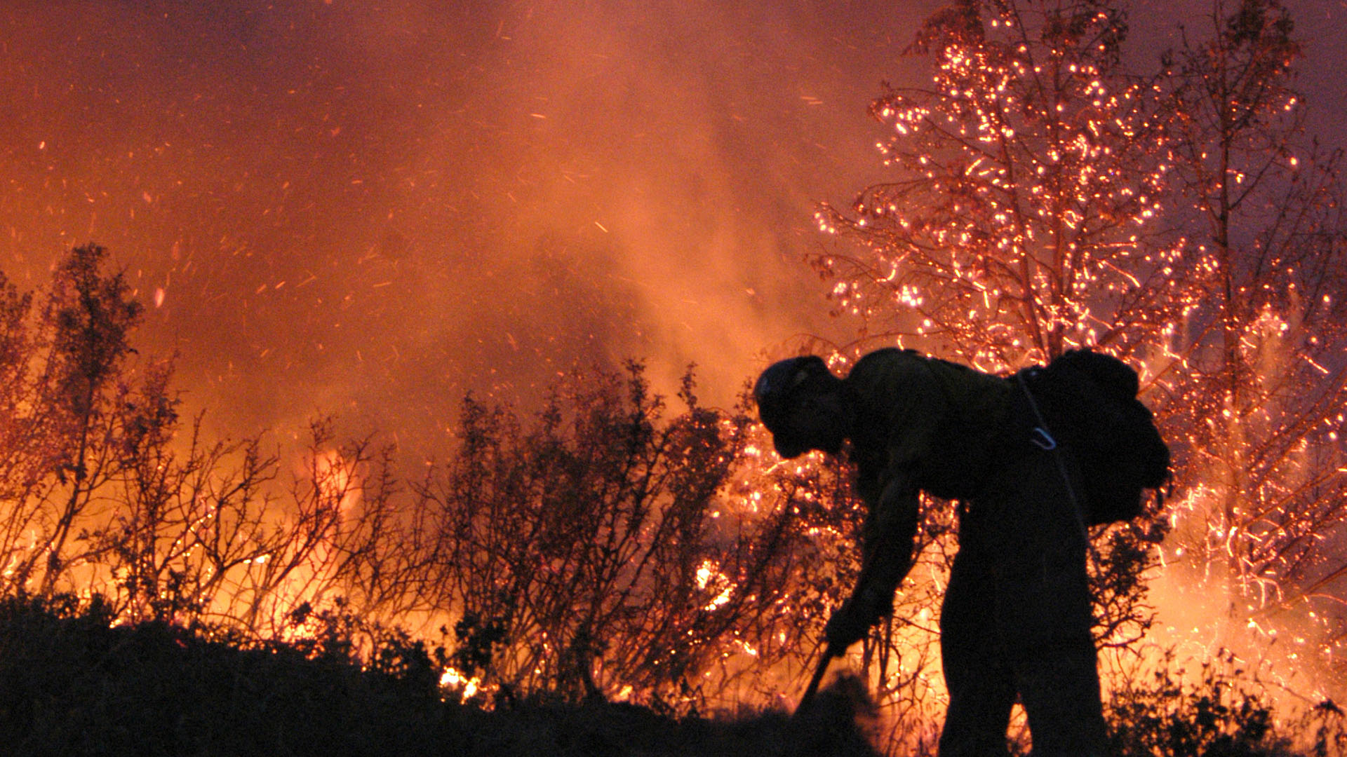 A firefighter works at a scrub fire.