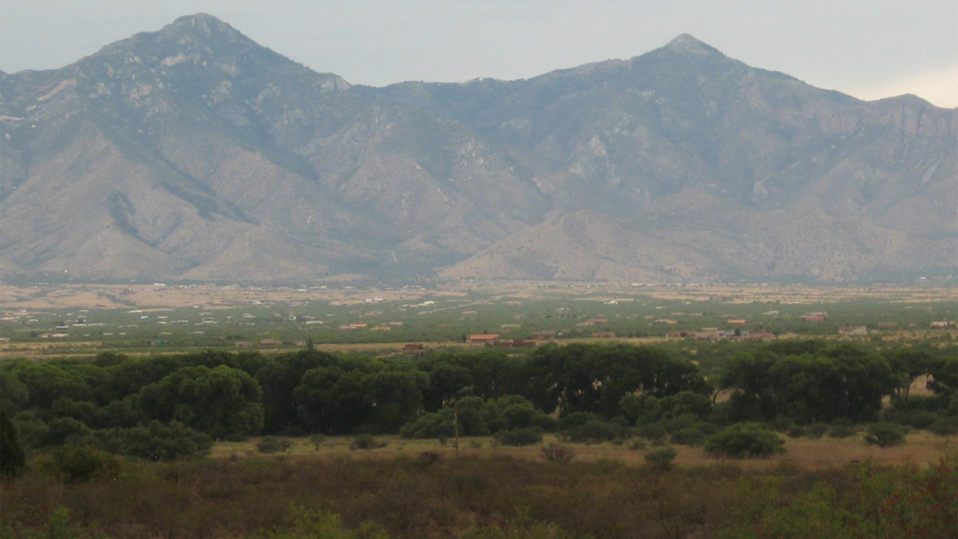 The San Pedro Riparian National Conservation Area.