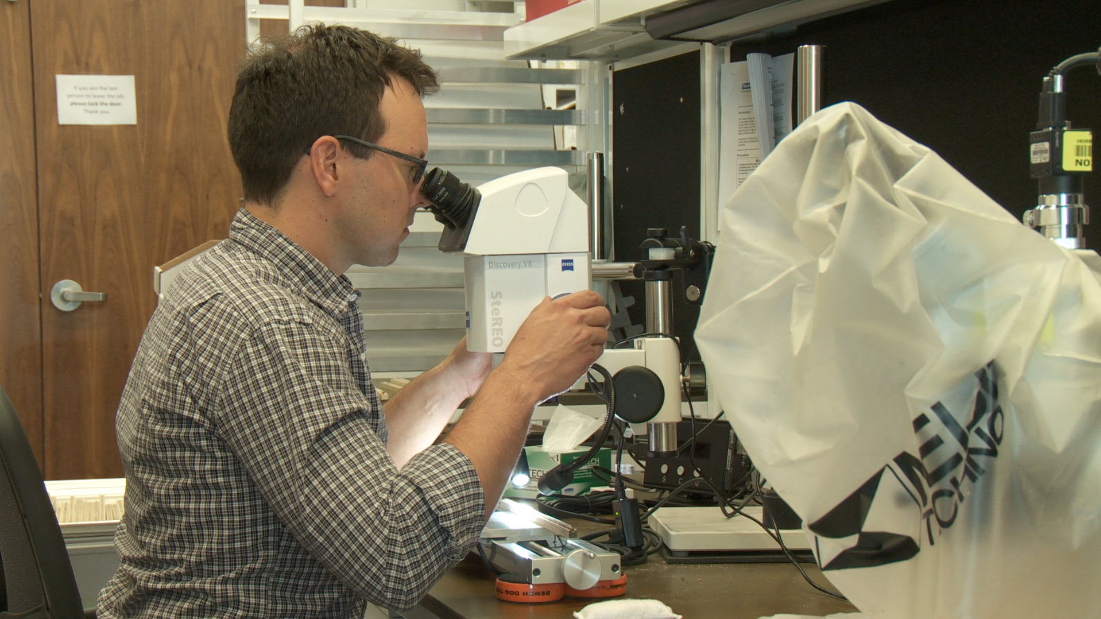 Geography and Tree Ring Lab researcher Kevin J. Anchukaitis studies climate, here he looks at a core sample under a microscope.