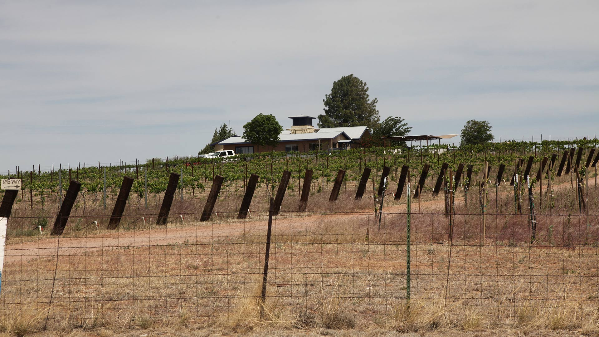 Arizona Hops and Vines sits along State Route 82 east of Sonoita.