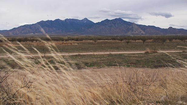 Canoa Ranch a 6-thousand acre atypical park that is home to thousands of years of civilization.