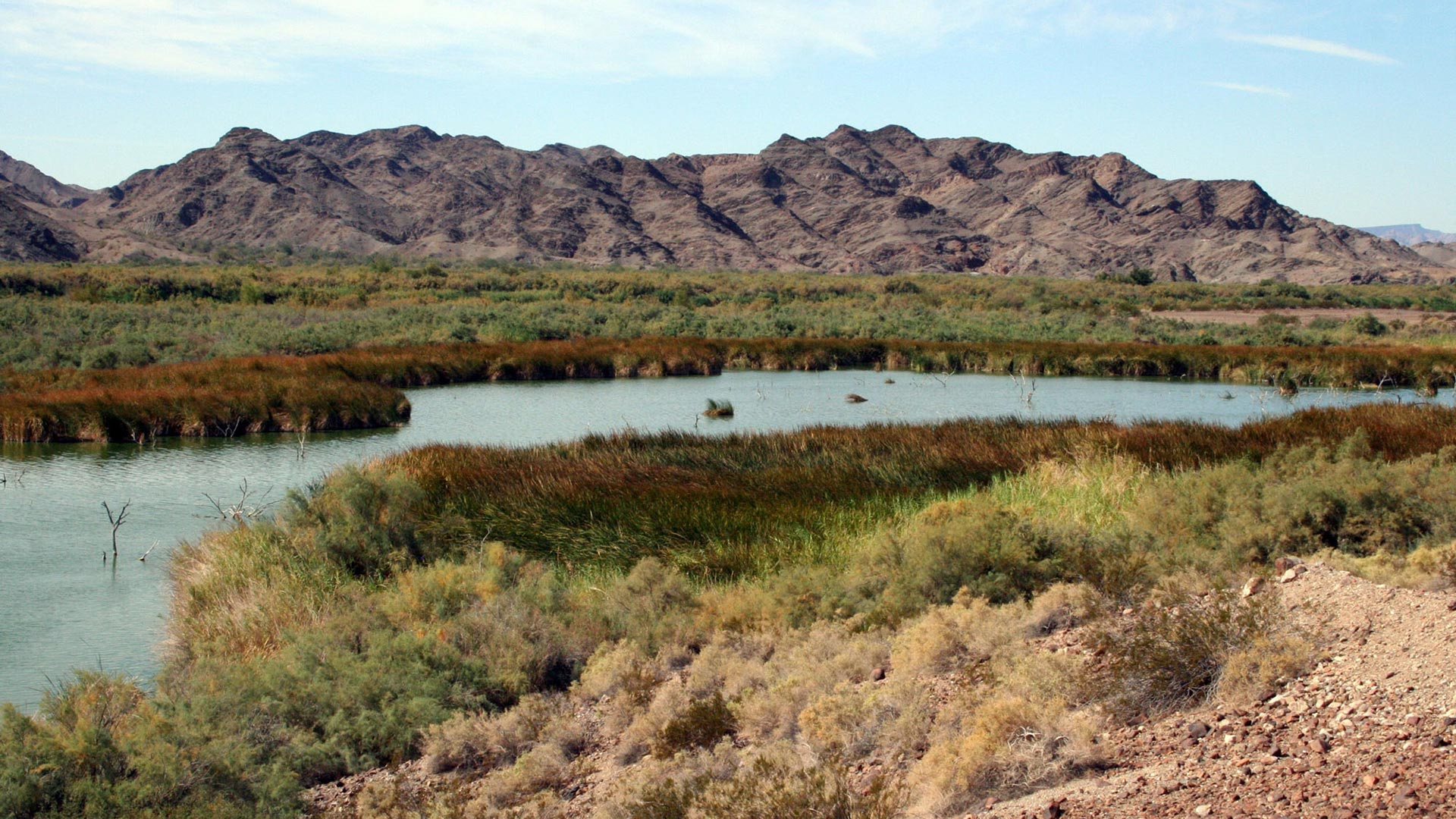 Image from a section of the Lower Colorado River Planning Area.