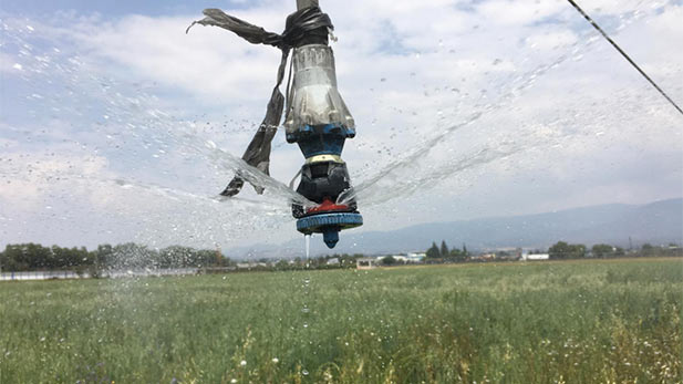 A sprinkler head in a Mexican field developed by students who have done engineering studies in Arizona.