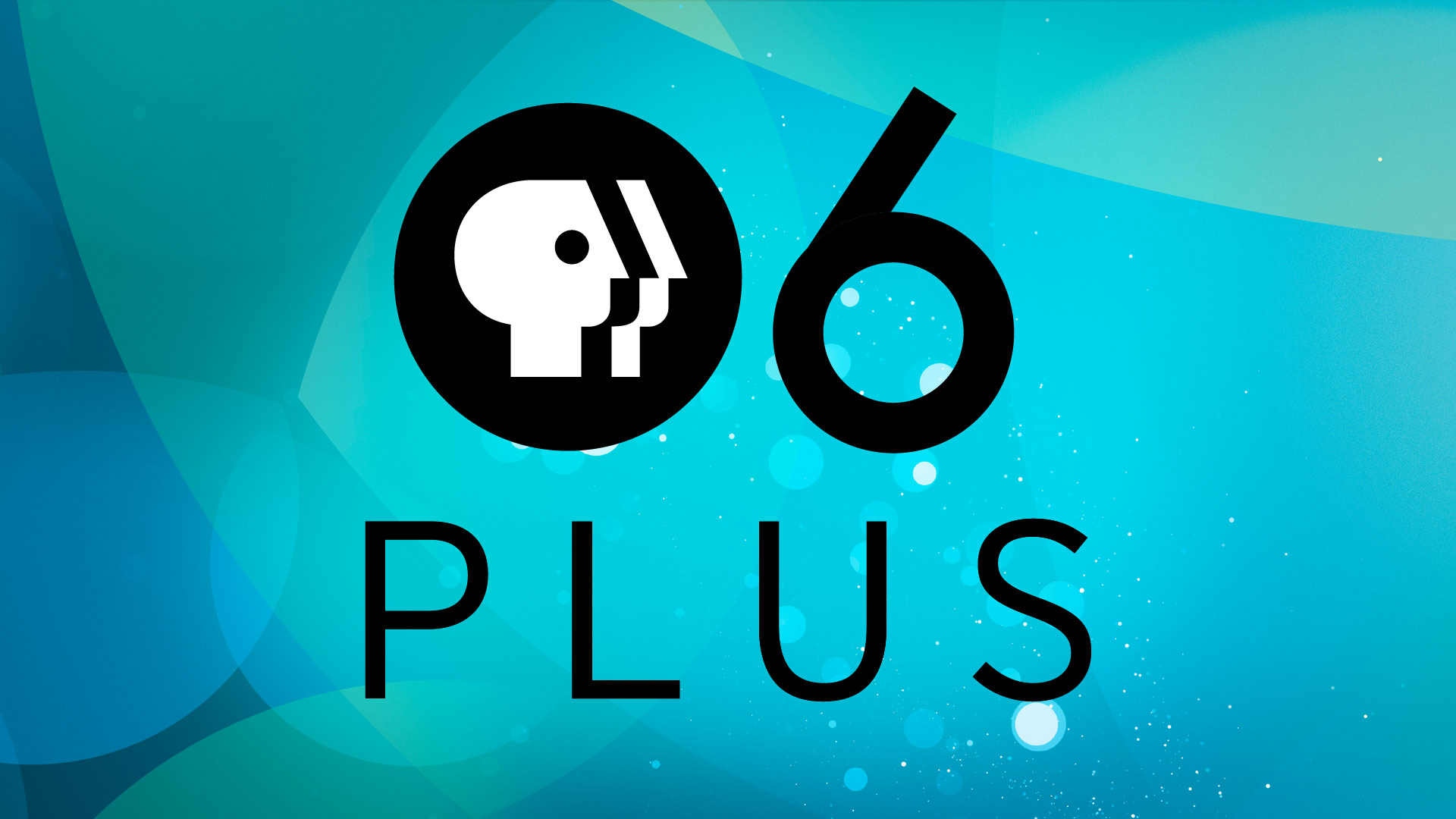 PBS 6 PLUS showcases the best of AZPM's programming across genres, including drama, science, history, the arts and more.