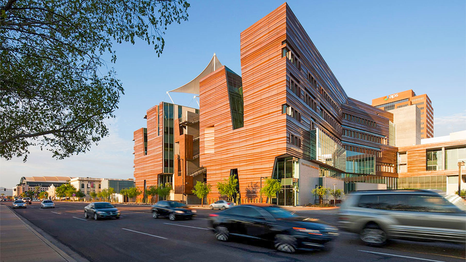 The University of Arizona College of Medicine in Phoenix.