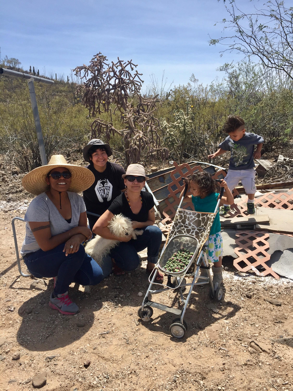 Desert foragers1