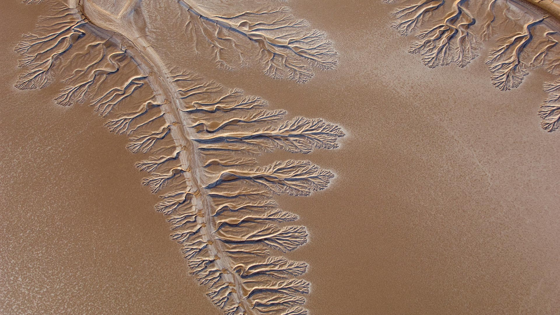 The dry Colorado River Delta in 2009.