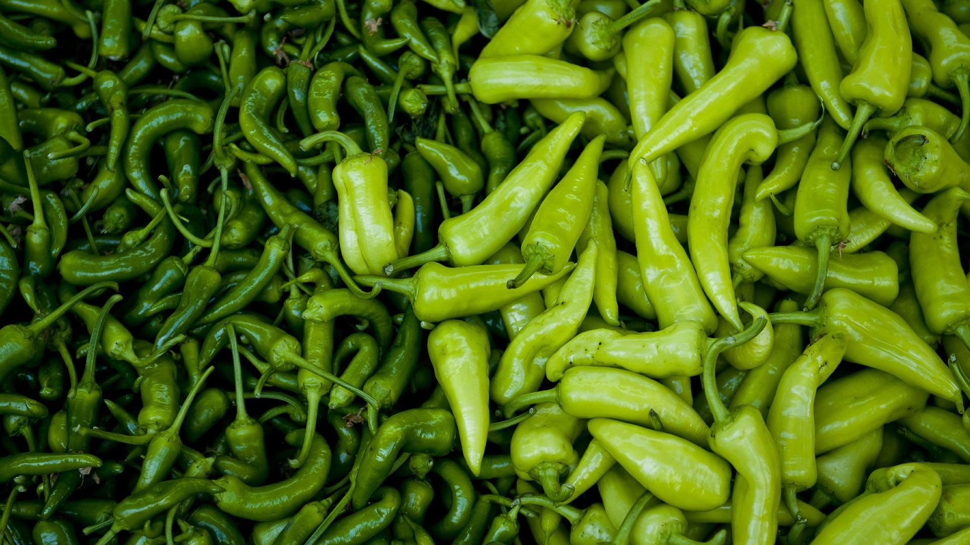 Fresh peppers.