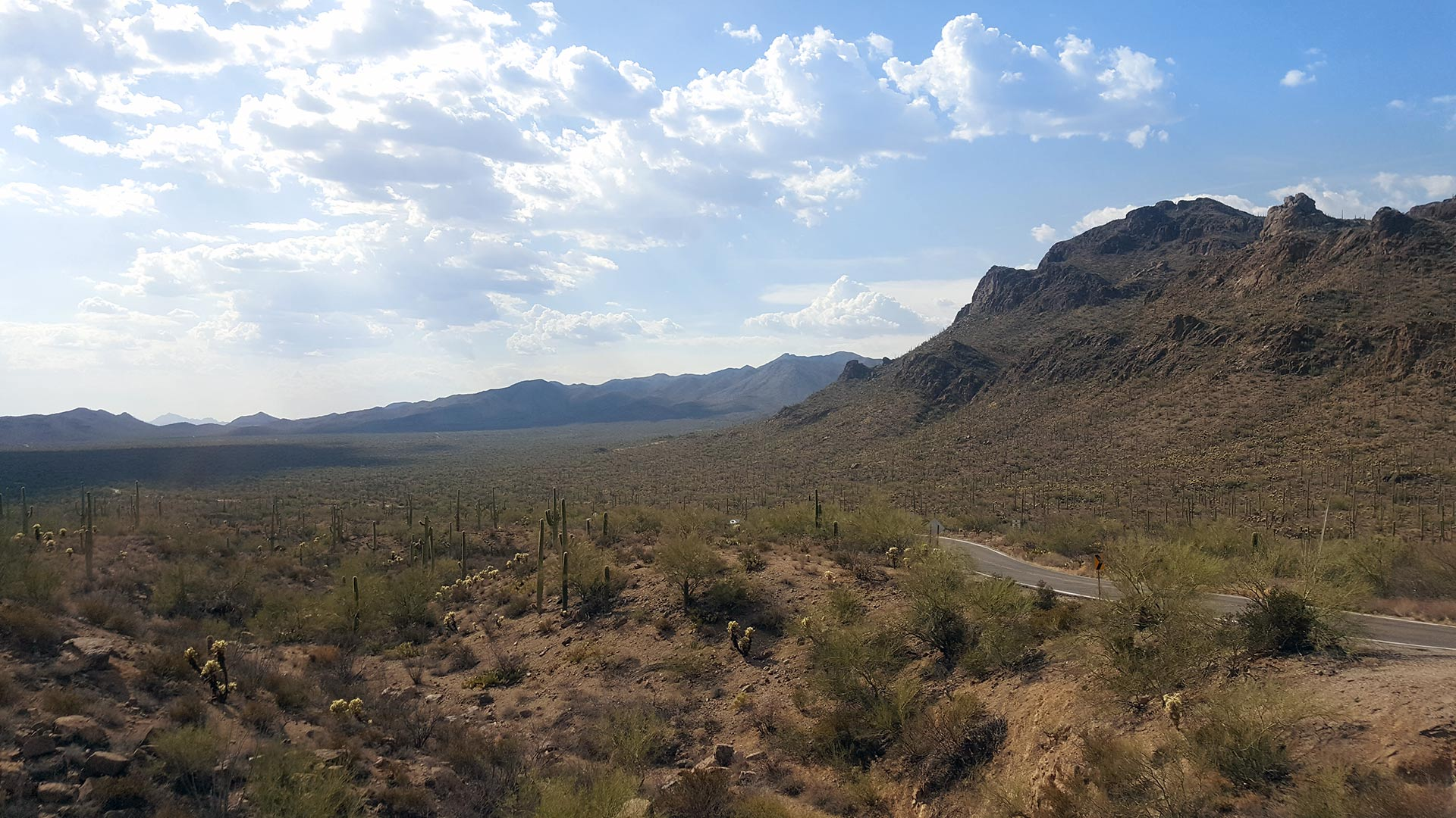 Looking west from Gates Pass towards Saguaro National Park West.