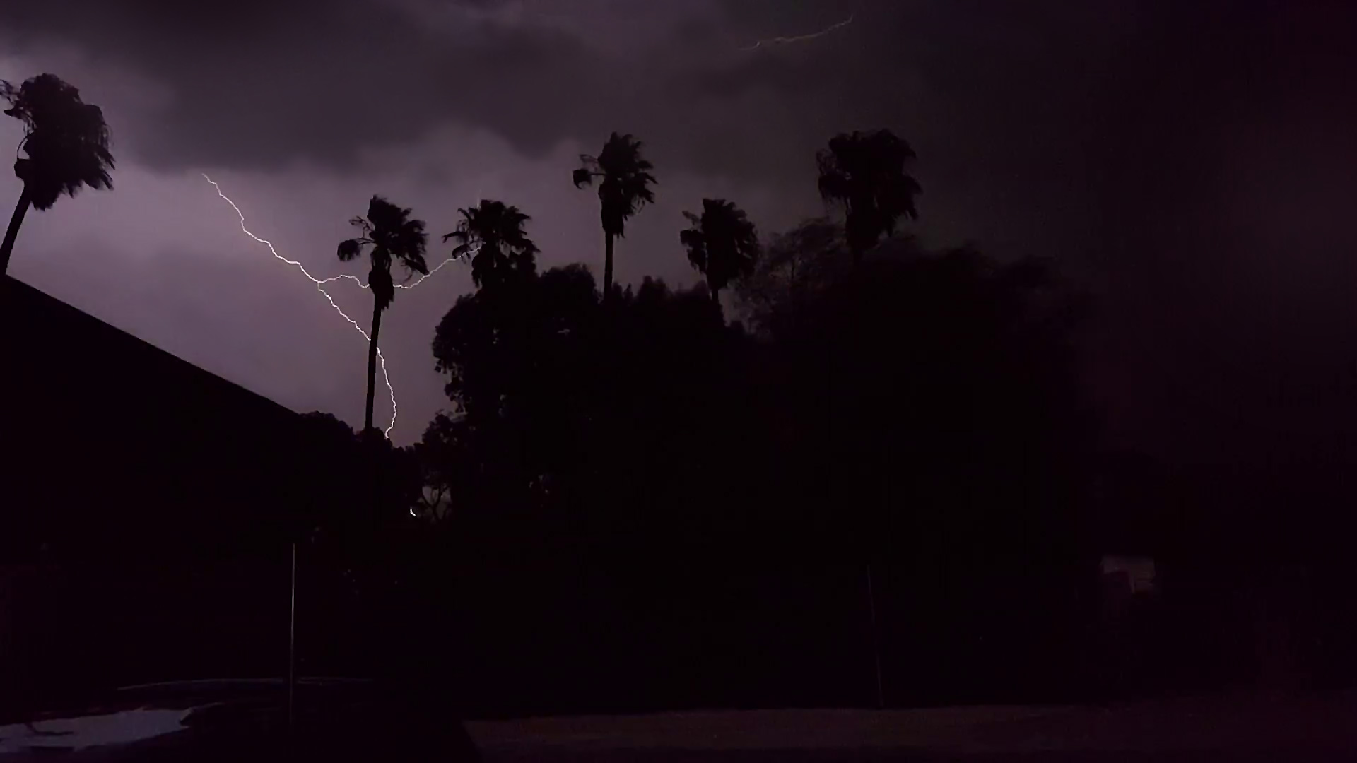 Lightning from a monsoon storm silhouettes palm trees against a dark sky. From July 2017.