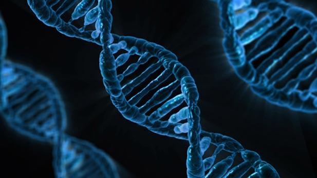 Genes DNA spot