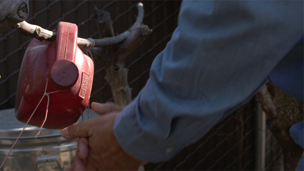 water conservation hand washing spotlight