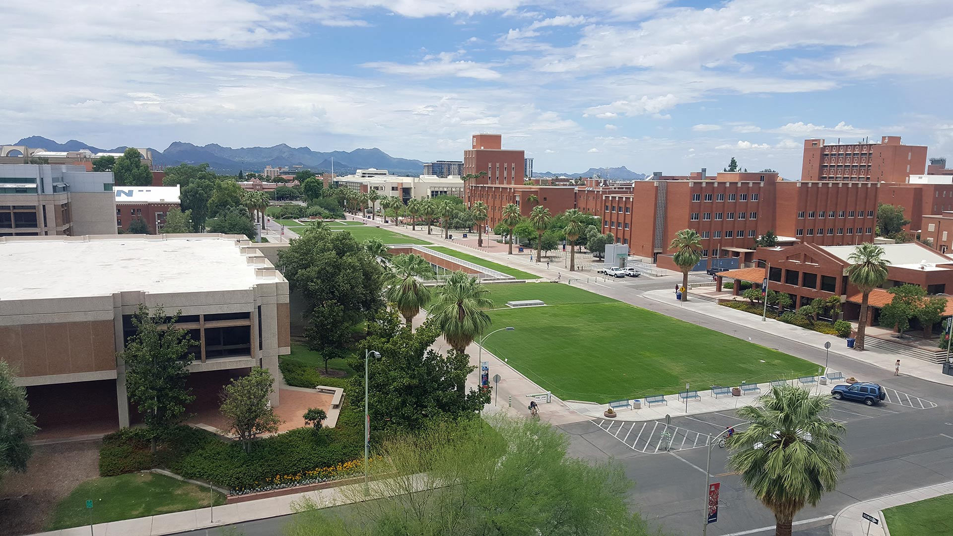 Looking down at the mall on the campus of the University of Arizona.