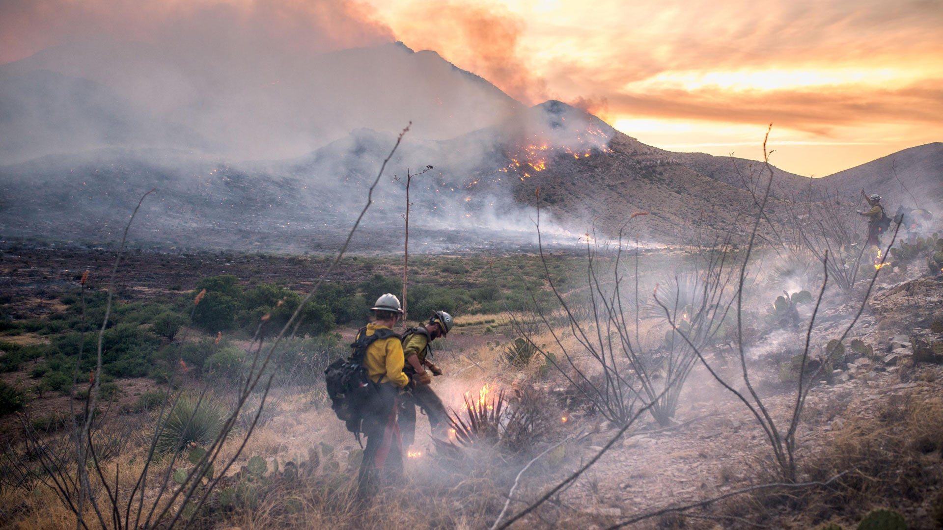Firefighters battle the Lizard Fire on a smoky hillside.