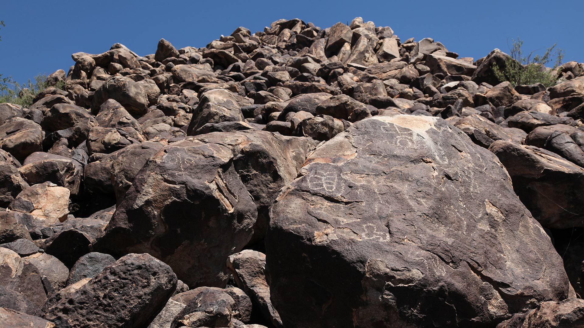 Native American Petroglyphs in Ironwood Forest National Monument.