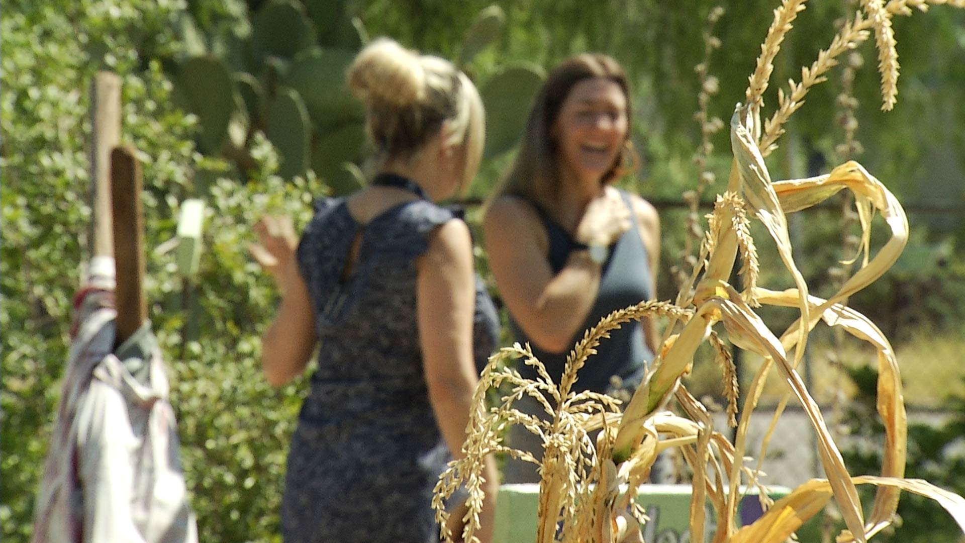 Rani Olson, right, works to raise food literacy in Tucson's schools.