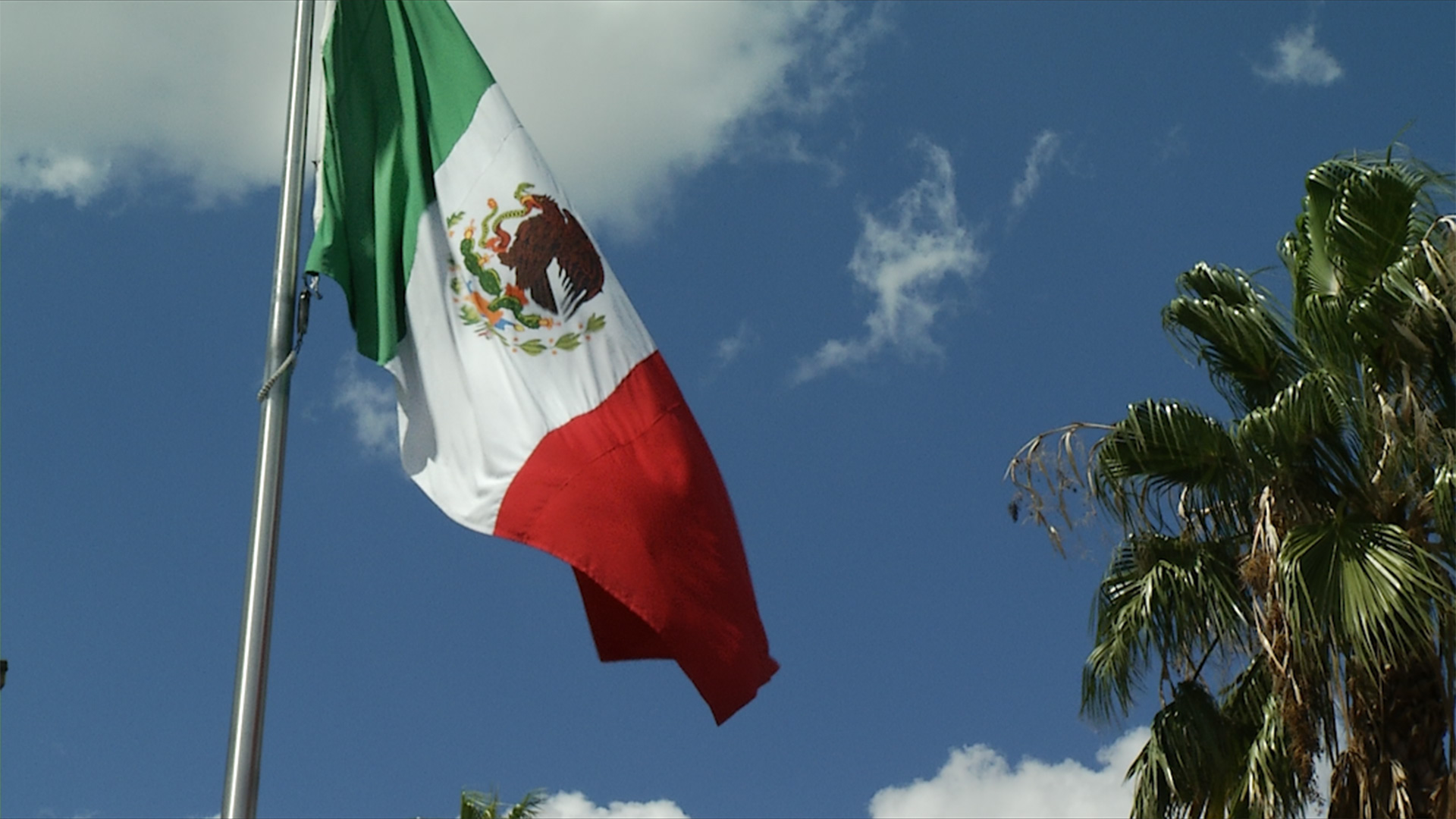 The Mexican flag waves outside the consulate office in Tucson, AZ