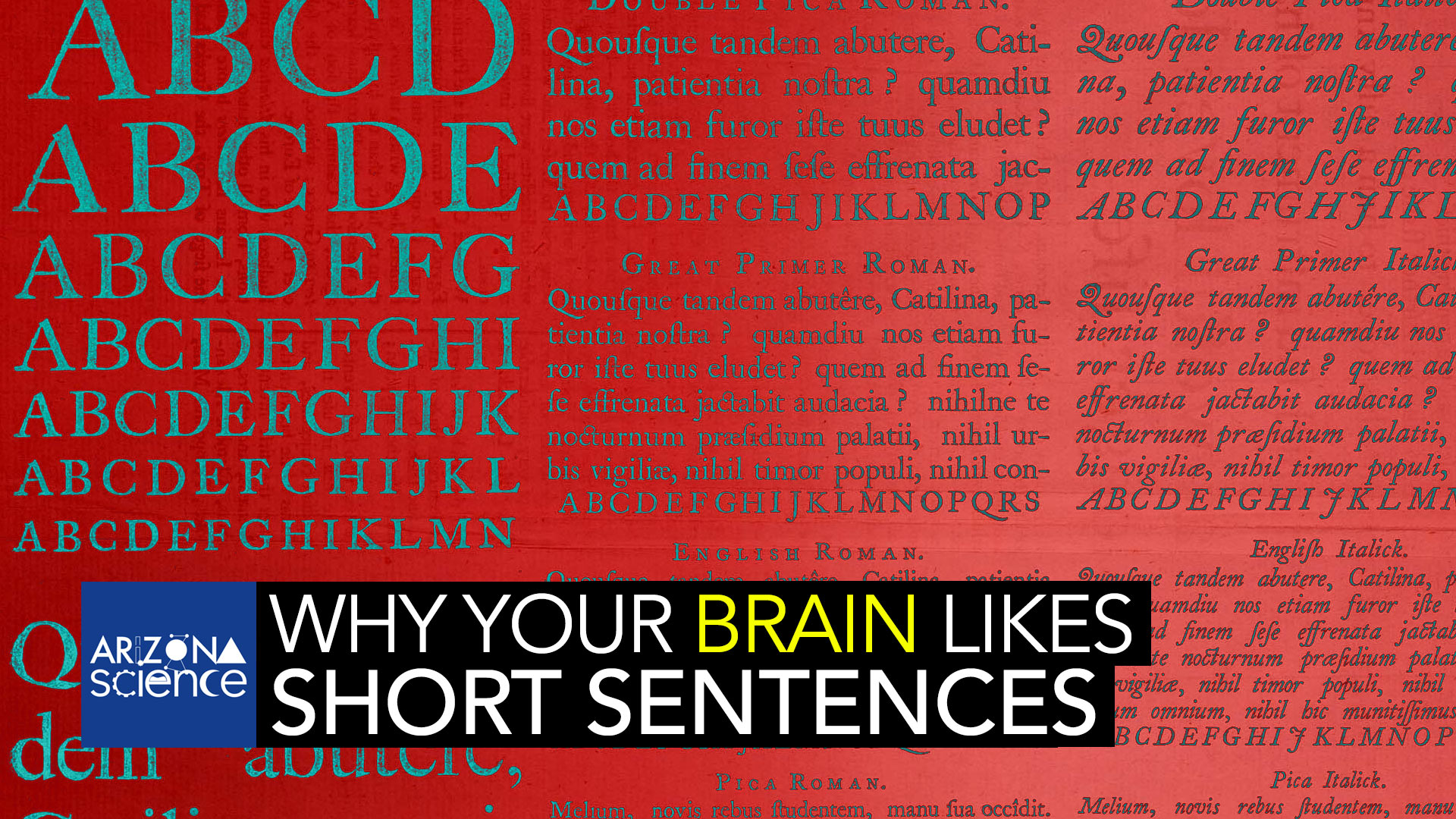A new study reveals that across all languages, our brains prefer shorter sentences.
