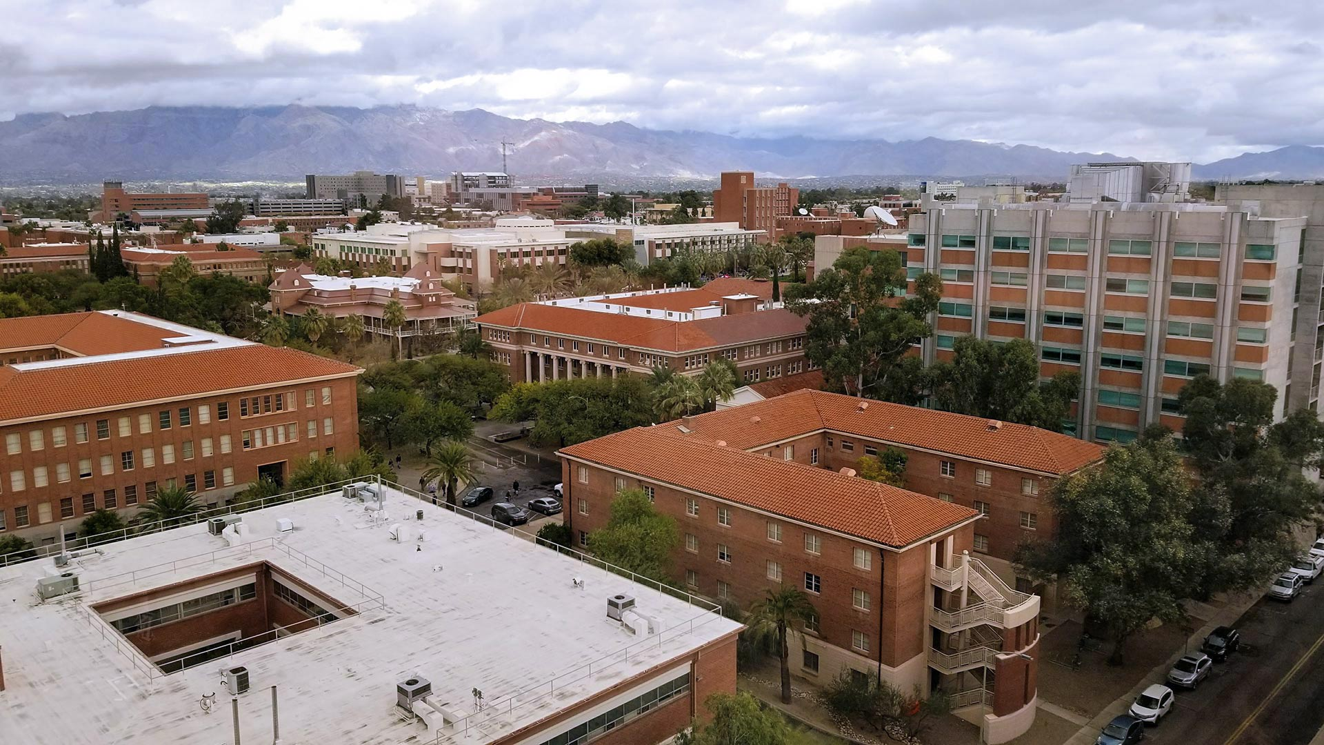 Looking across the University of Arizona campus towards the Catalina Mountains.