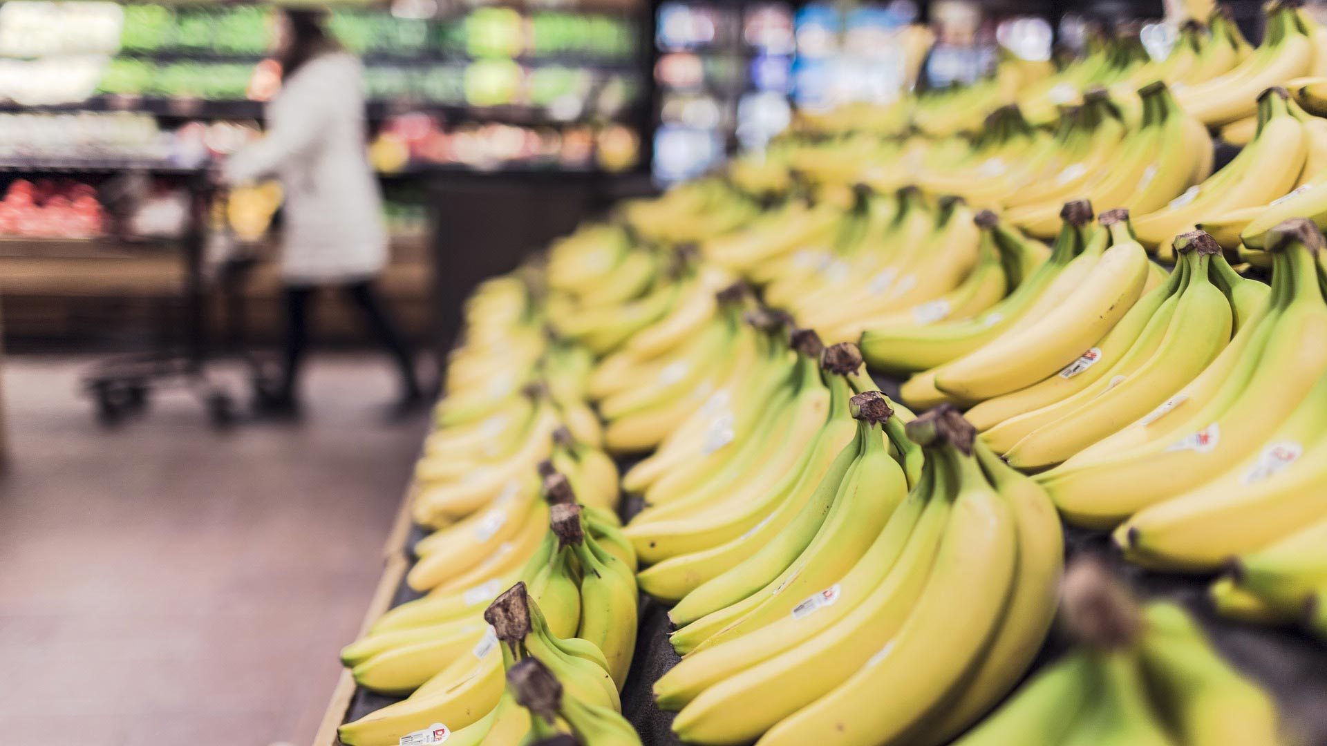 Bananas in the produce section of a grocery store.