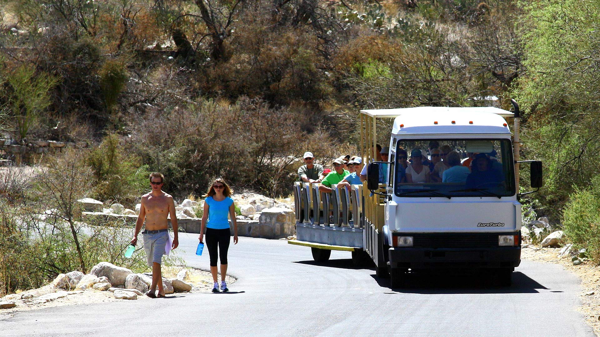 The tram at Sabino Canyon, 2011 (CC BY 2.0).
