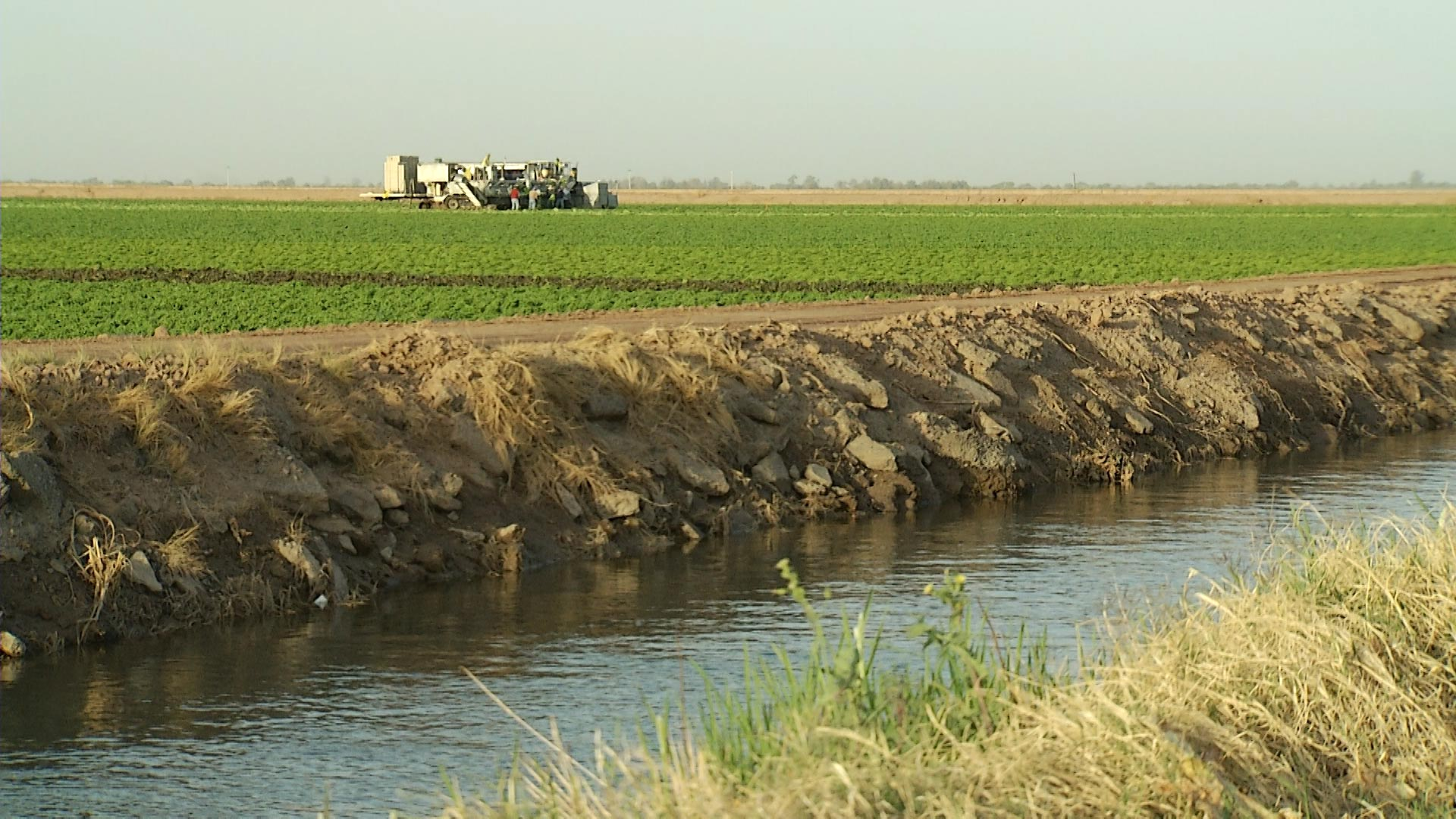 Agricultural communities would be among the first impacted by cuts to Colorado River water.