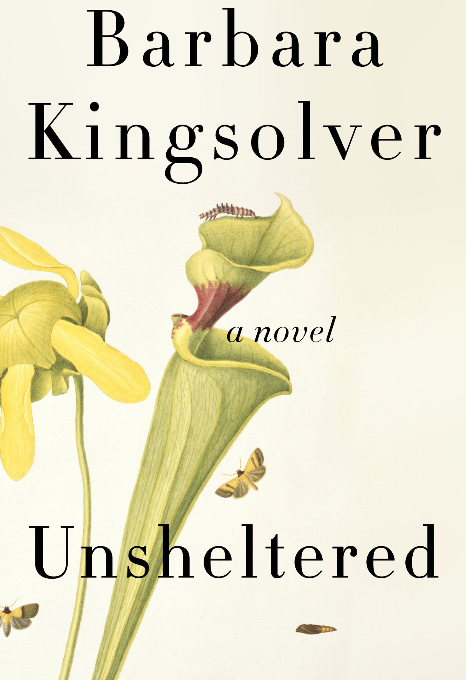 kingsolver unsheltered book jacket