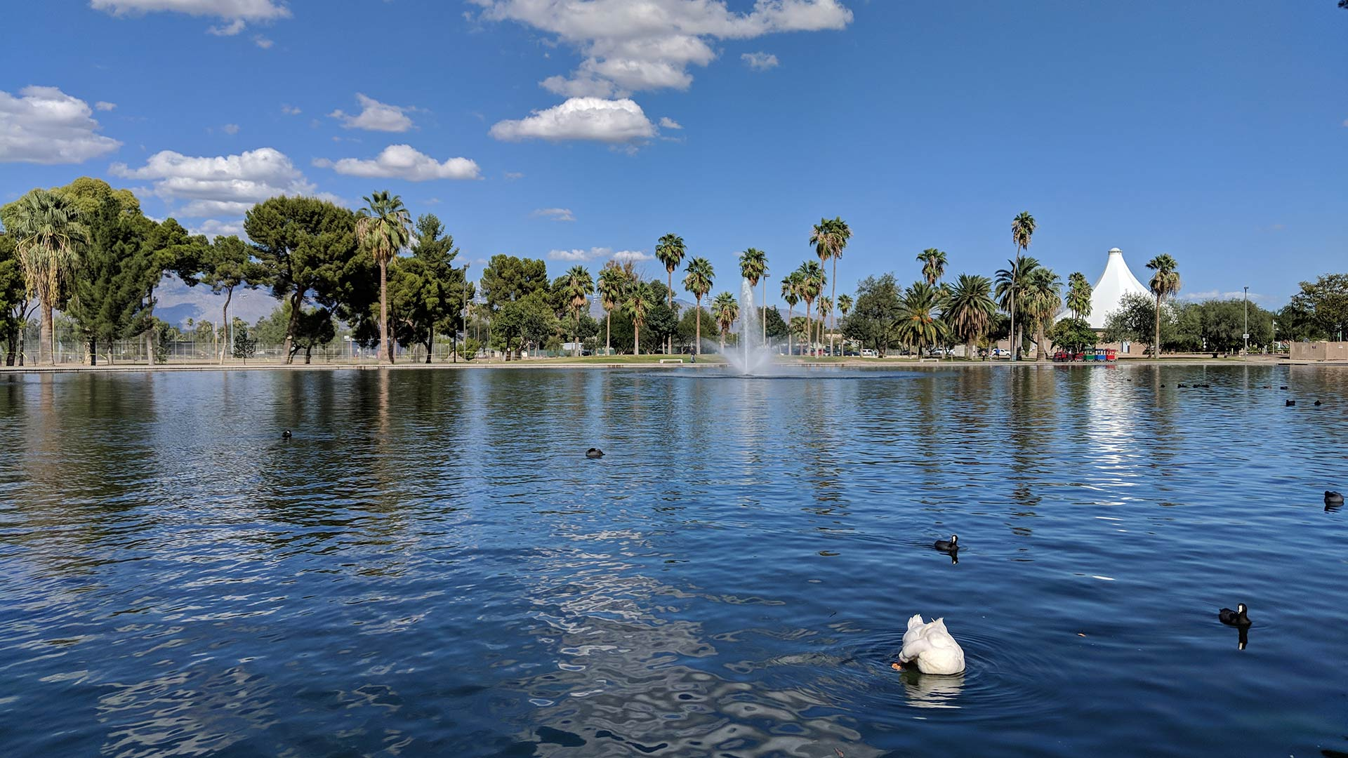 Reid Park would be the target of more than $5 million in improvements by Proposition 407.