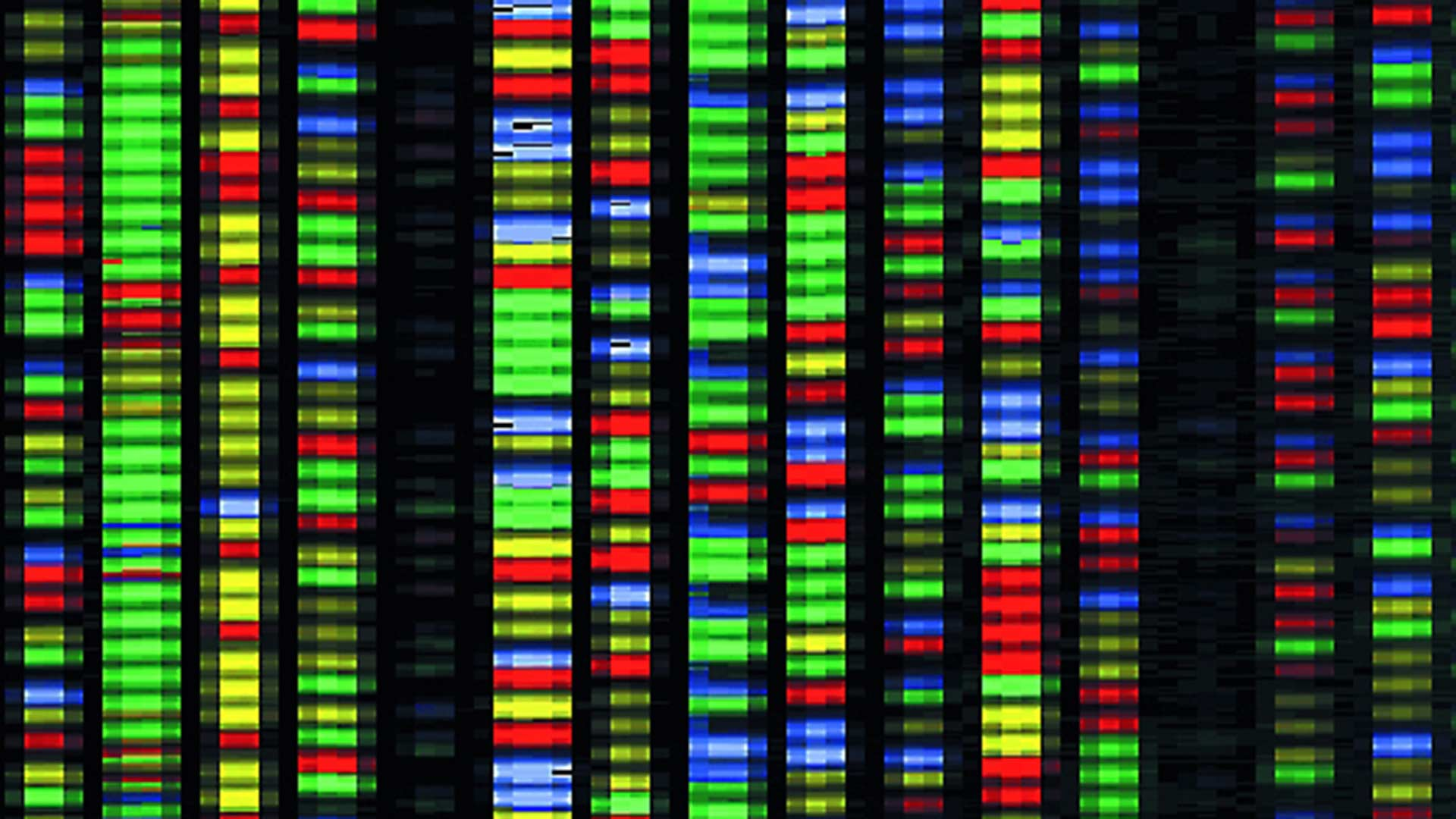 Portion of an image produced by software that performs DNA sequencing.