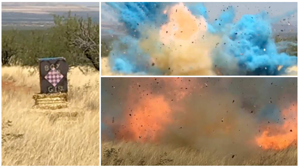 Images from video released by the U.S. Forest Service of the gender-reveal party that sparked the Sawmill Fire.
