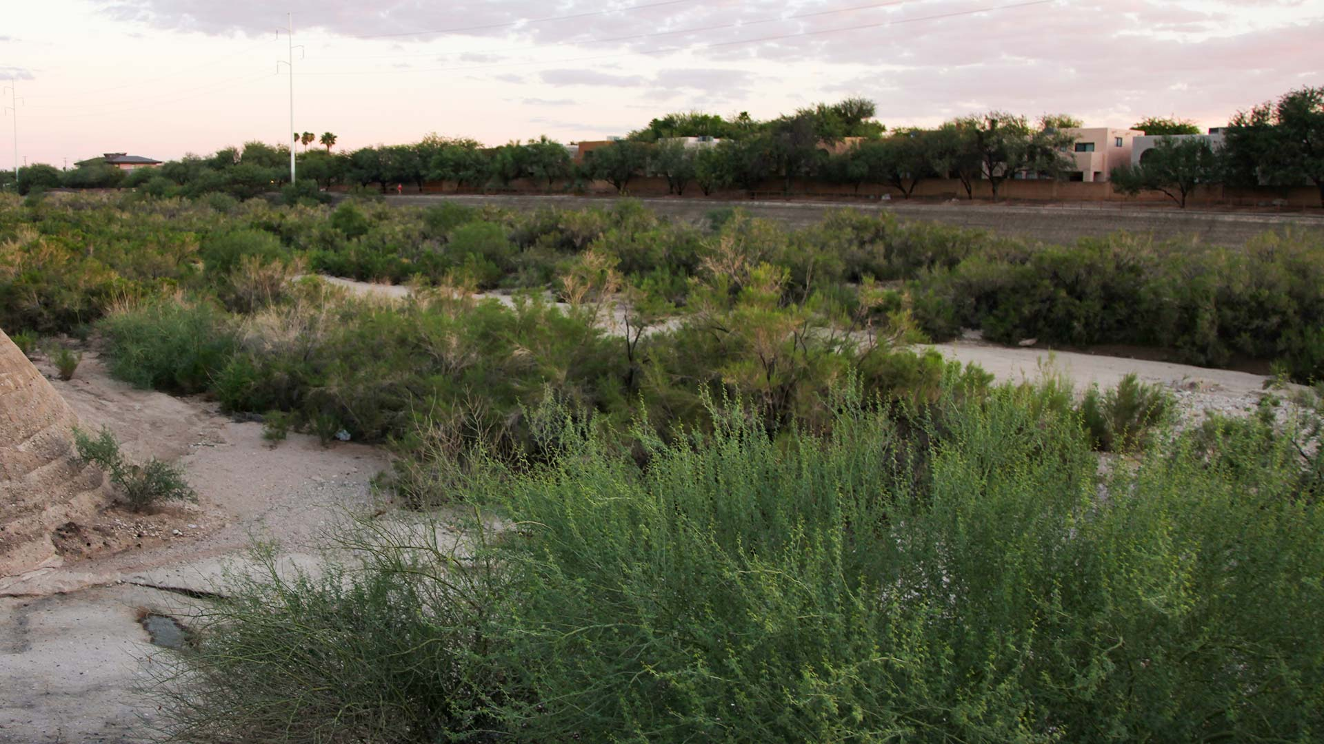 The Rillito River runs dry at the end of the rainy season in Tucson.