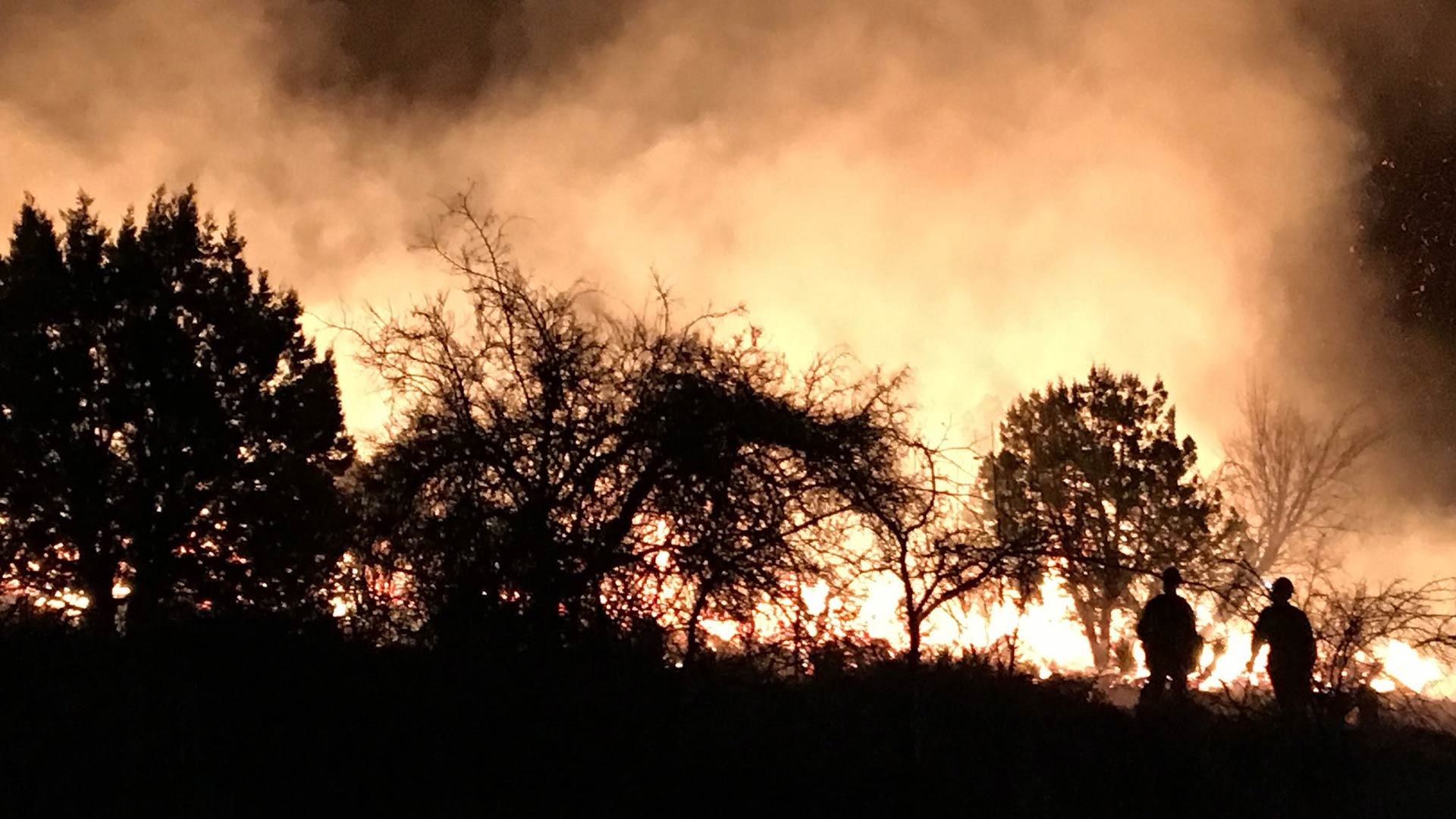 Firefighters work to contain the Knob Hill Fire, February 2018.