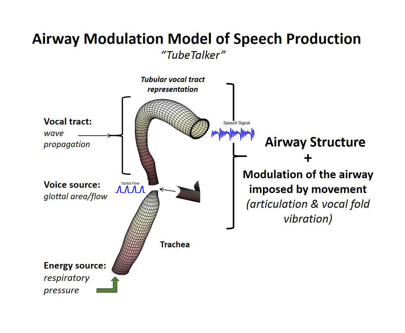 AZSCI Airway Modulation