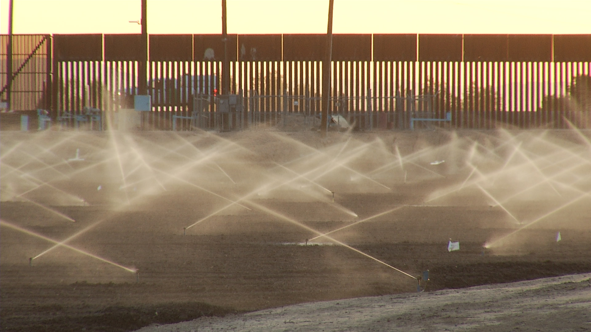 Watering at a Yuma farm, 2014.