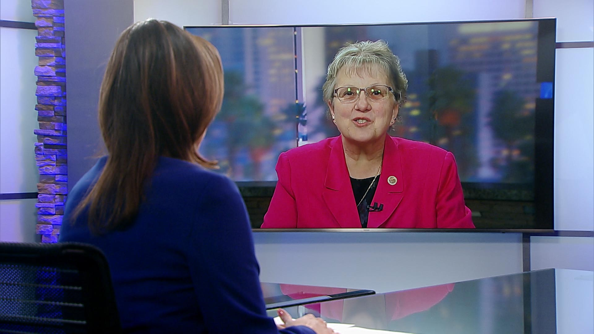 Arizona Superintendent of Public Instruction Diane Douglas interviewed by Arizona 360 in March 2018.