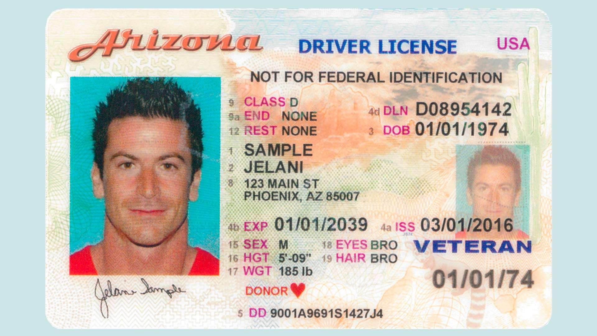 Example of an Arizona driver's license.