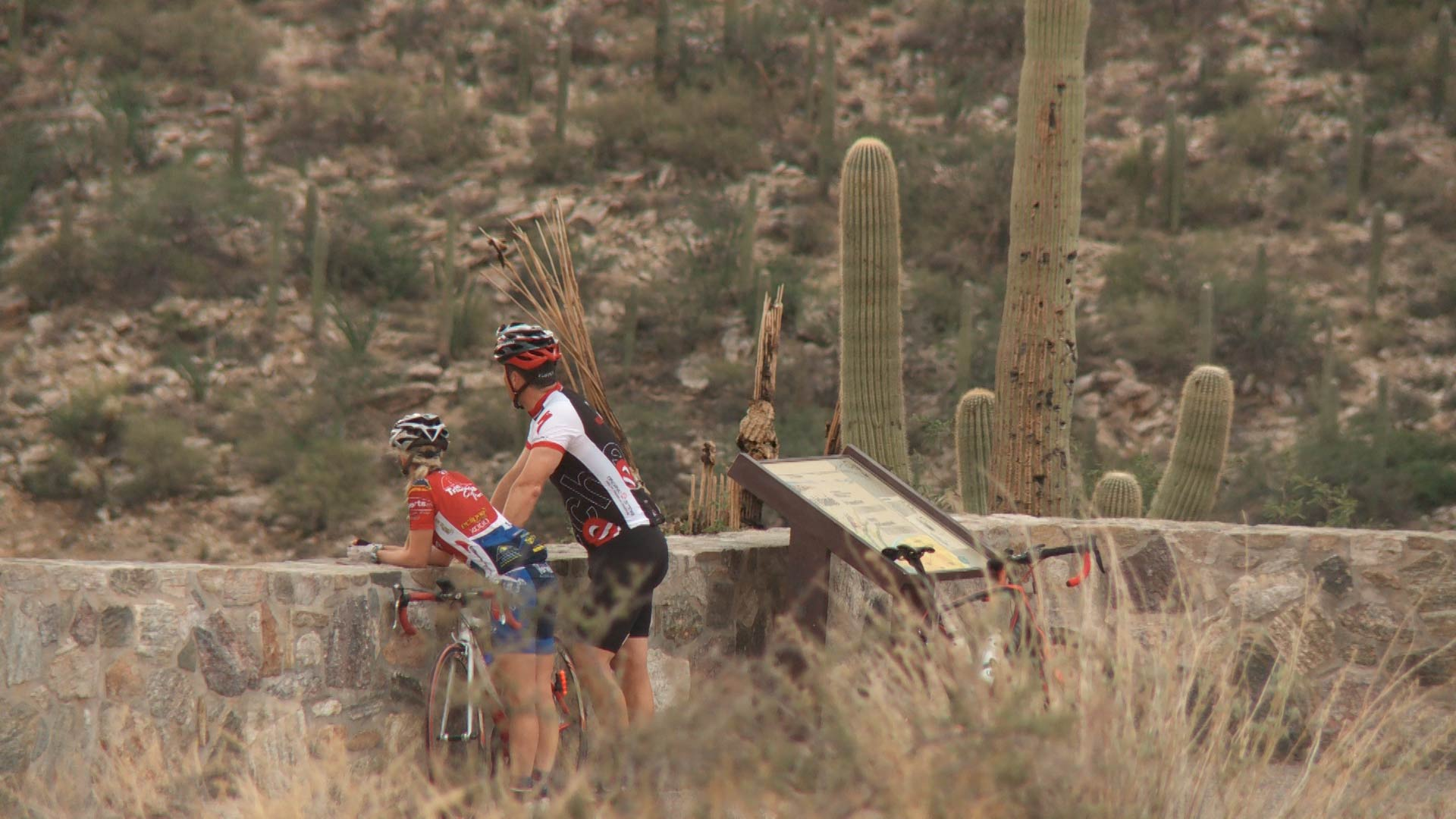 Two cyclists rest at a scenic overlook at Mount Lemmon.