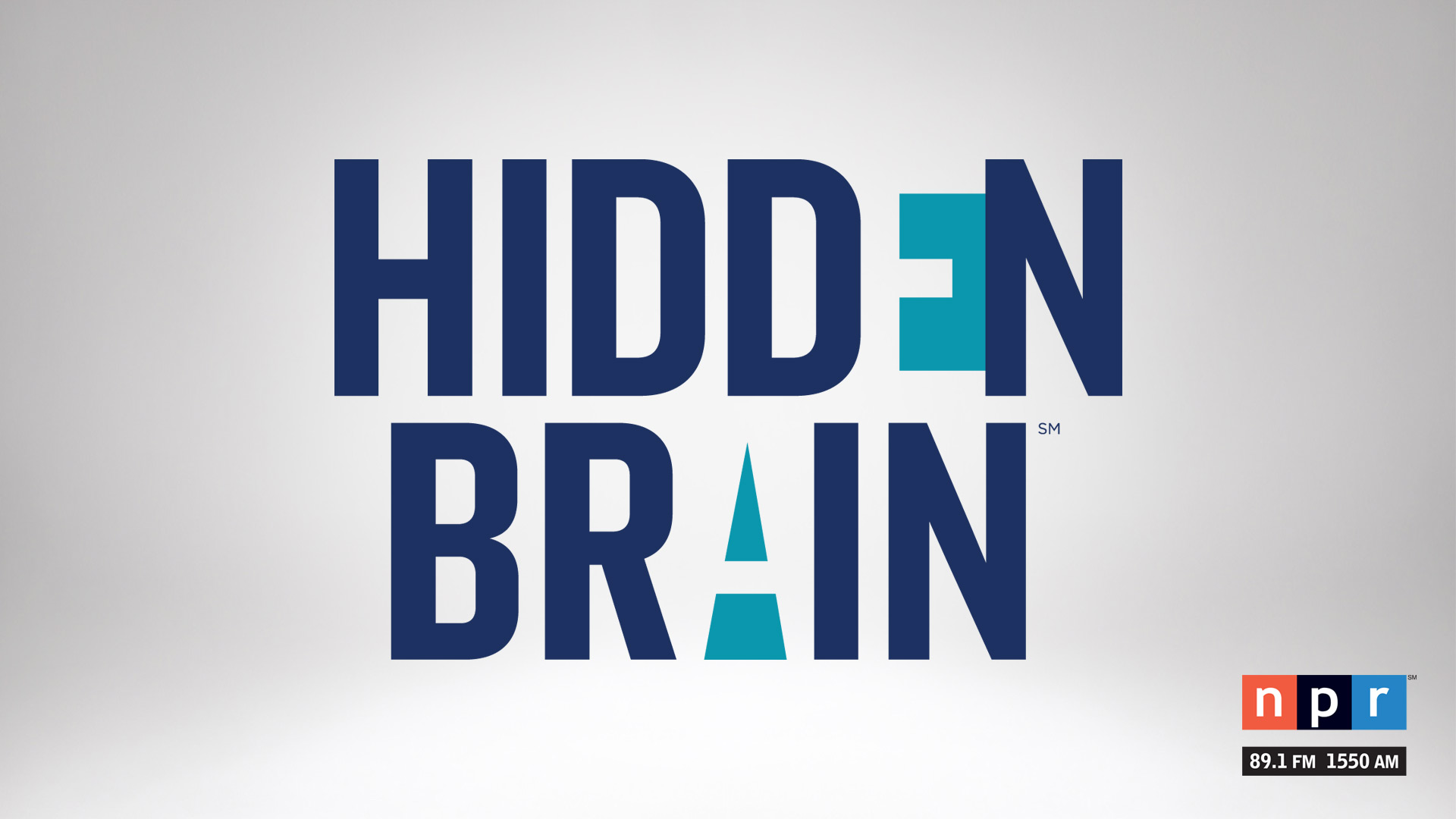 Hidden Brain hero