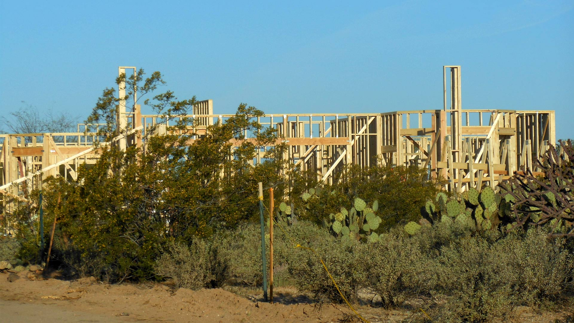 Home construction is a bright spot in an otherwise unchanged Arizona economic report.