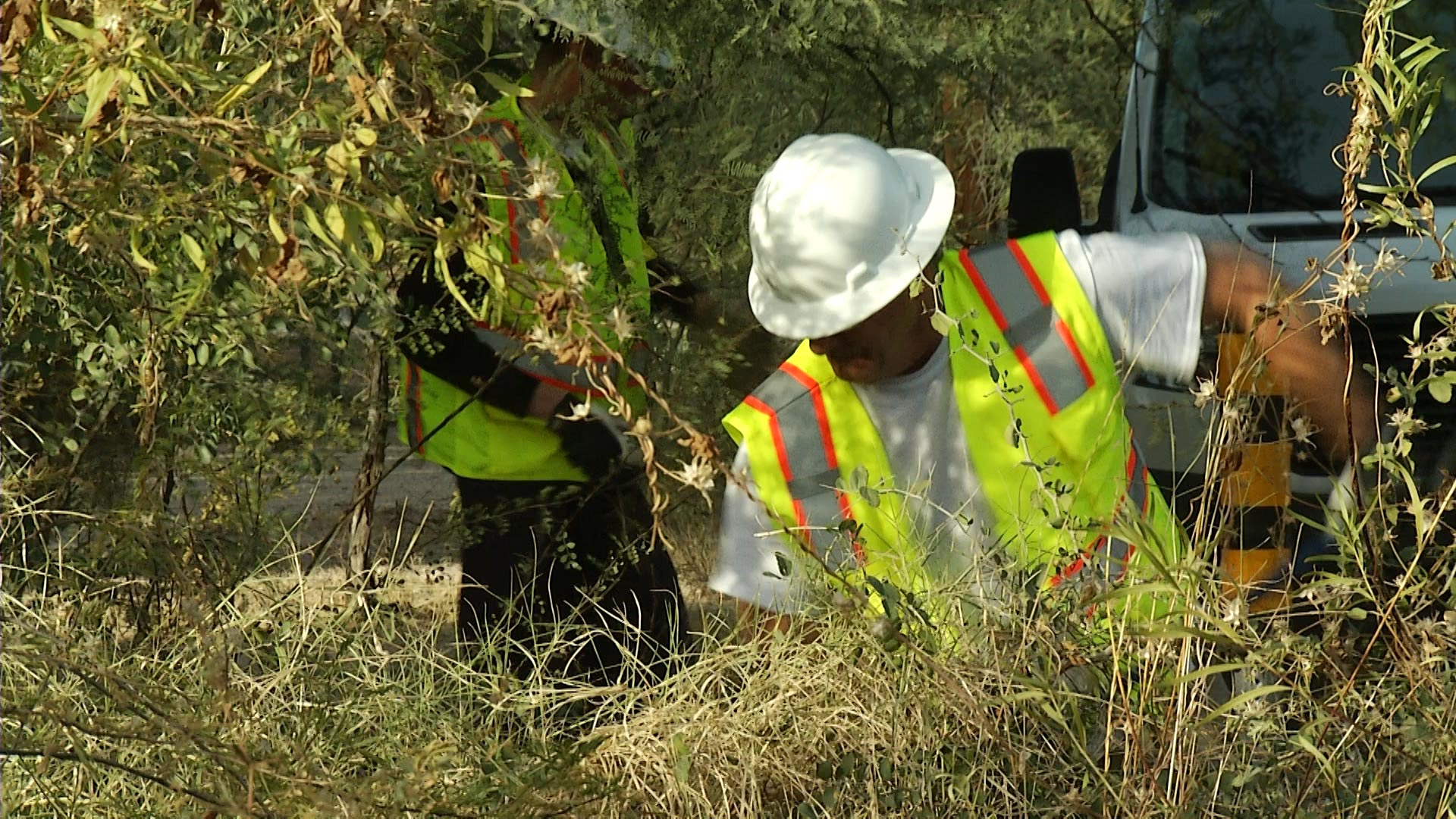 Two men clean up plant debris from a neighborhood as part of the Tucson Homeless Work Program. The program offers homeless individuals daily jobs assigned by the City of Tucson and Pima County.