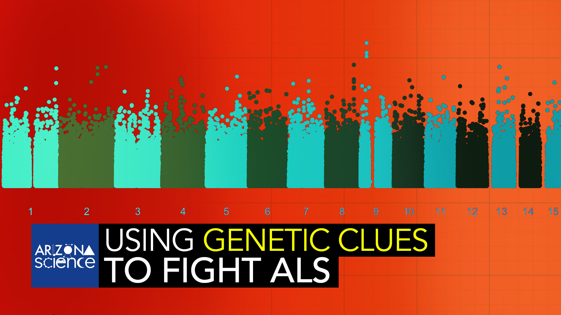 U of A molecular biologist Daniela Zarnescu is using a catalog of genetic information to help provide clues in the battle against ALS.