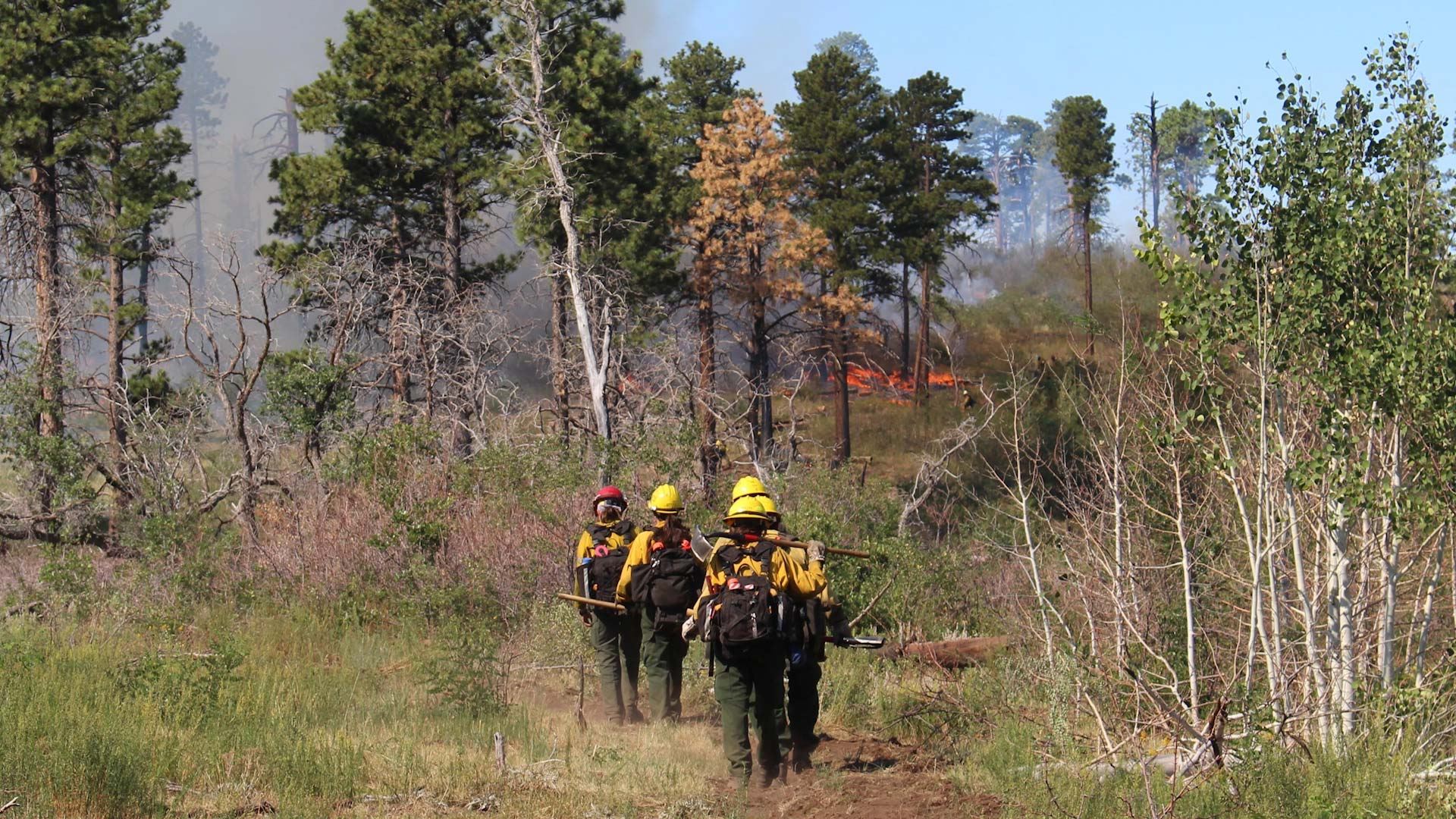 Firefighters assigned to the Obi Fire approach the fireline. Lightning caused the fire in Walhalla Plateau in Arizona on July 21, 2018.