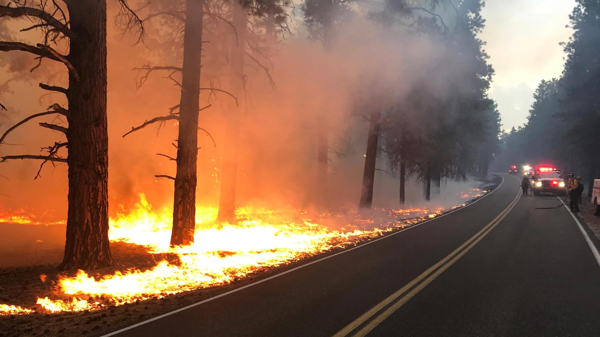 Flames from the Obi Fire run parallel to a highway. Lightning sparked the fire near Walhalla Plateau in Arizona on July 21, 2018.