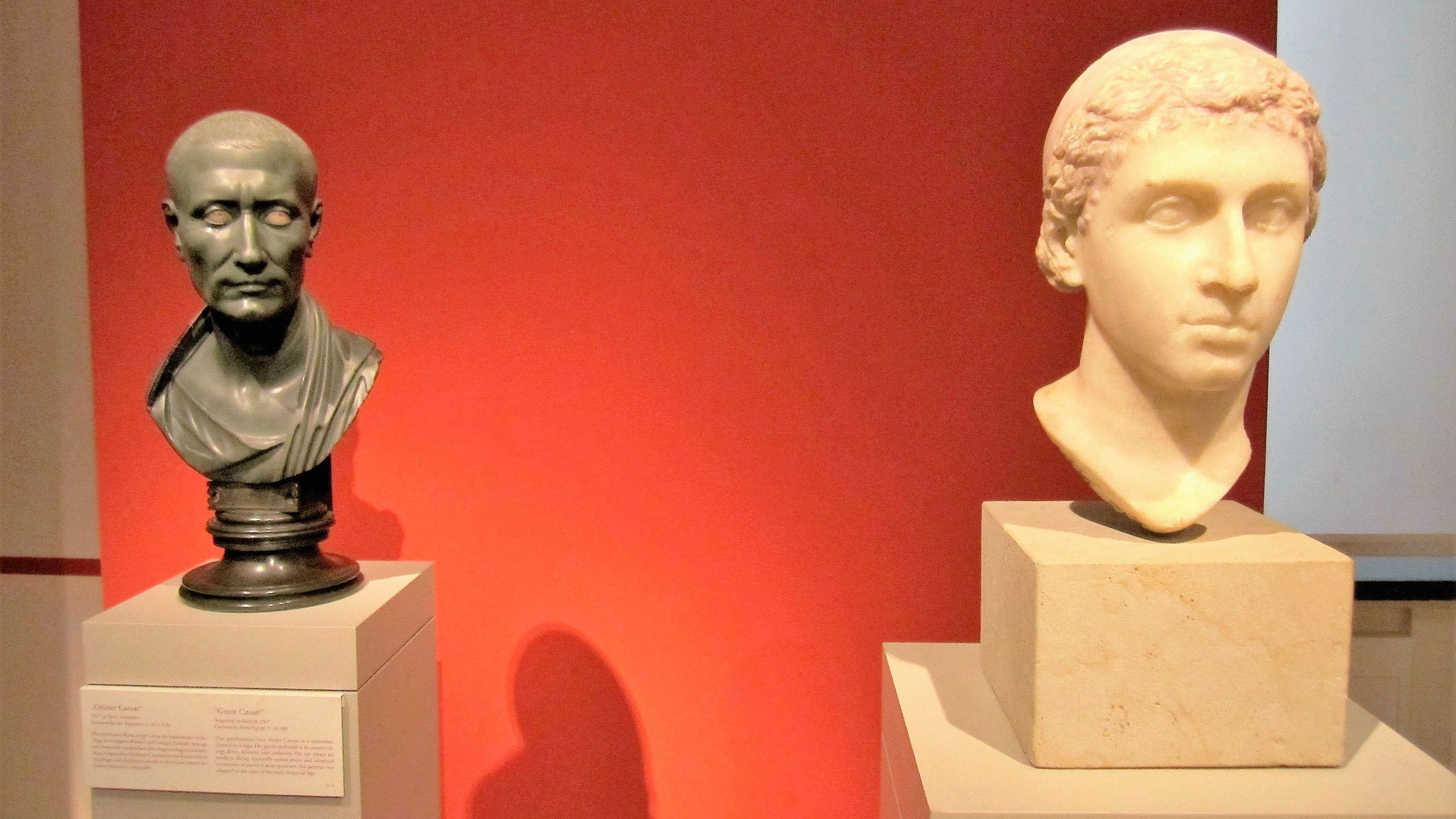 cleopatra and caesar busts spotlight