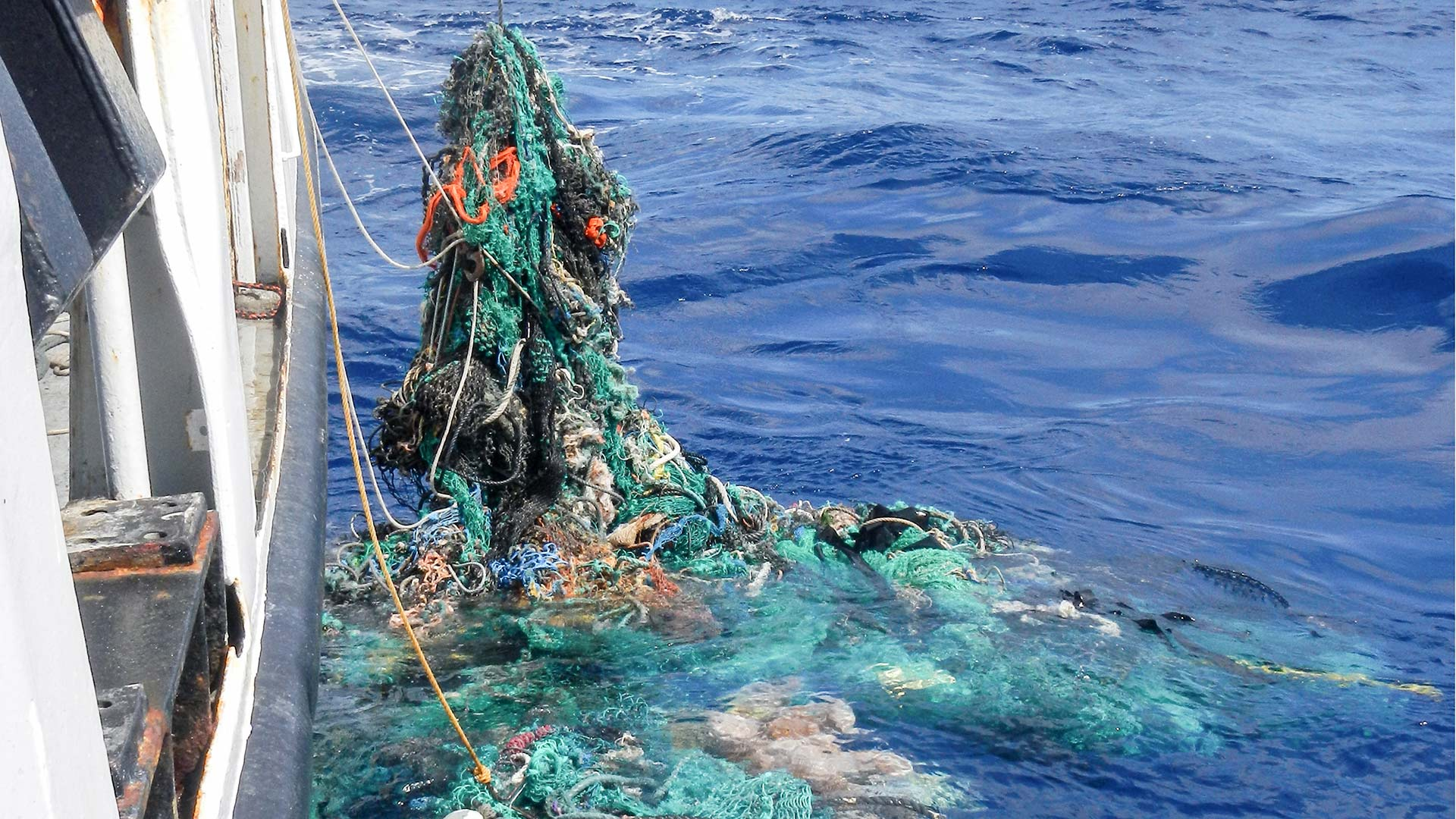 Researchers retrieve a fishing net from the Pacific Ocean in 2015.