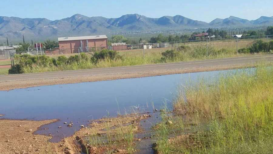 Raw sewage pools up near the Naco Port of Entry in Arizona after a pump was unable to handle the flow of effluent and ruptured.